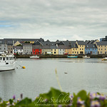 Colorful Claddagh Homes